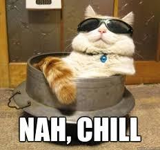 Chill Meme - nah chill chill cat quickmeme