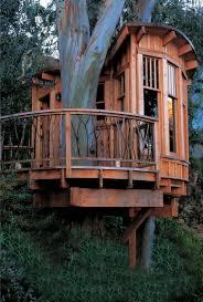 treehouse amazing spaces u0026 places pinterest treehouse tree