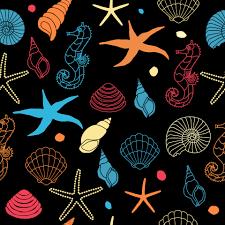 seahorse seashell wallpaper free stock photo public domain pictures