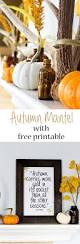 thanksgiving mantel 2843 best autumn images on pinterest fall thanksgiving