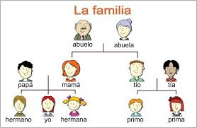 family tree example family tree template 1 25 family tree