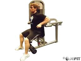 Triceps Bench Dips Seated Tricep Dip Exercise Database Jefit Best Android And