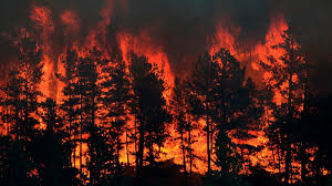 Wildfire Woodland Hills Ca by Are Wildfires Worsening Due To Development Climate Change And