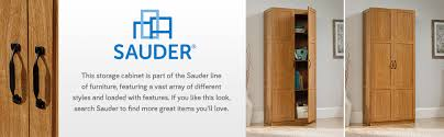 oak finish storage cabinet amazon com sauder storage cabinet highland oak finish kitchen