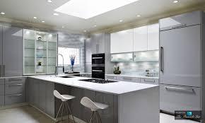 custom glass door cabinetry in modern high gloss kitchen design