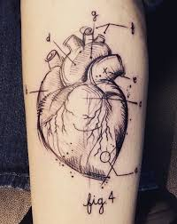 heartbeat city tattoo 33 best anatomical heart tattoo images on pinterest anatomical
