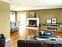 home design 87 outstanding living room color ideass