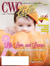 Home Decor West Columbia Sc Cayce West Columbia Life October 15 U0027 By Todd Shevchik Issuu