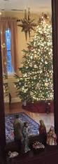 332 best images about colonial christmas on pinterest virginia