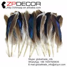Mallard Duck Home Decor Online Get Cheap Mallard Duck Feathers Aliexpress Com Alibaba Group