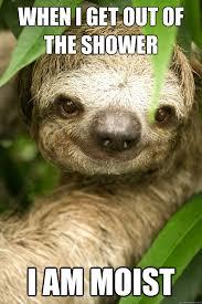 I Am Moist Meme - when i get out of the shower i am moist sloppy sloth quickmeme