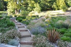 Maintenance Free Backyard Ideas 15 Great Ideas For A Lawn Free Yard