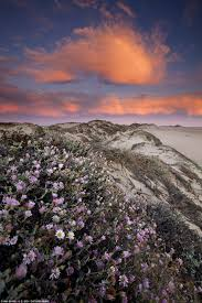 Department Of The Interior Doi America U0027s National Park Photos Voted Best Of Spring By U S