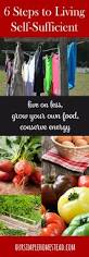 best 25 self sufficient ideas on pinterest crop production and