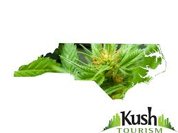 north carolina marijuana information kush tourism