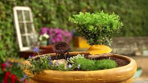 Fairy Garden Container Ideas by How To Create A Fairy Garden In A Container How Tos Diy