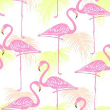 wallpaper with pink flamingos pink flamingo wallpaper fine decor flamingos wallpaper flamingo