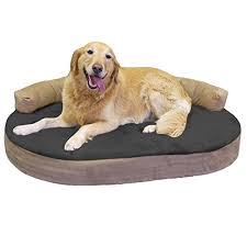 Tempur Pedic Dog Bed The Best Dog Beds For Labs And Large Dogs In 2017 Reviewed