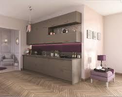 couleur de meuble de cuisine couleur de meuble de cuisine peinture cuisine beige decoration