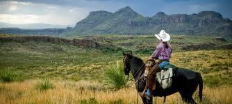 Home Decor Stores San Antonio Tx Far West Texas Wildlife Trail U2014 Texas Parks U0026 Wildlife Department