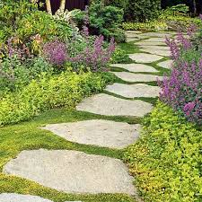 Backyard Ground Cover Ideas Backyard Patio Cover Large And Beautiful Photos Photo To Select