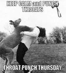 Throat Punch Meme - throat punch thursday dumb bitch quickmeme