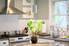 Kitchen Grow Lights The Day Green And Growing Shedding Some Light On The