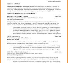 executive summary resume exles strikingly sle executive summary for resume unthinkable exle