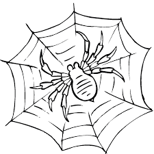 spider with skulls colouring pages for halloween spider coloring