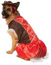 Halloween Costumes Xxxl Pet Dj Master Large Products