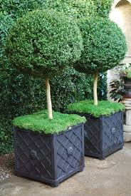 best 25 black planters ideas on pinterest tall planters