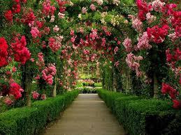 images of beautiful gardens beautiful garden pictures amazing beautiful garden 6 amazingly