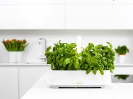 portable herb garden gallery of various types and models kitchen nano garden led