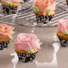 flourless mini vanilla cupcakes recipe anna olson anna and