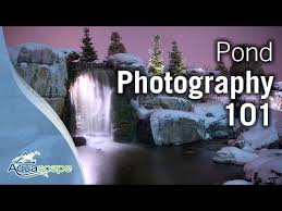 Aquascape Sfa3000 Aquascape Photography Techniques