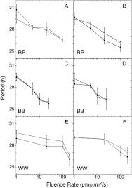 robust circadian rhythms of gene expression in brassica rapa