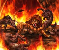 simba fighting hyenas pride rock lion king