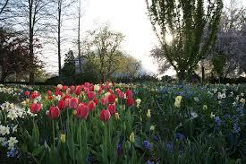 The Missouri Botanical Garden Formal Gardens