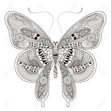 gorgeous butterfly coloring page in exquisite style royalty free