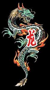 dragon vectors photos psd files free download