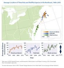 Map Of The Northeastern United States by Climate Change Indicators Marine Species Distribution Climate