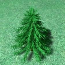 small pine tree model