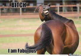 I Am Fabulous Meme - b tch i am fabulous by gmk21 meme center