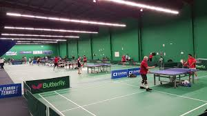 table tennis store near me badminton pickleball table tennis lessons pro shop