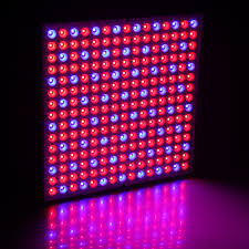 225 led grow light panel reviews online shopping 225 led grow