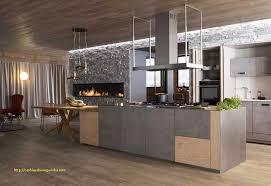 meuble de cuisine en bois 30 frais meuble cuisine bois et noir photos meilleur design de cuisine