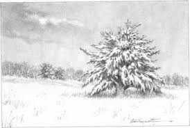 mountains with snow and trees drawing nature joshua nava arts