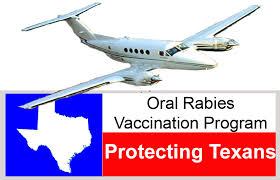 Texas travel vaccinations images Texas department of state health services infectious disease jpg