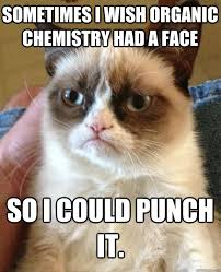 Organic Chemistry Meme - sometimes i wish organic chemistry cat meme cat planet cat planet