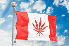 Pot Flag Pot Hotels Set To Pop Up In Canada Potnetwork